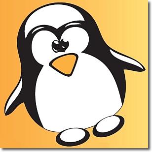 Simbolo linux 2011