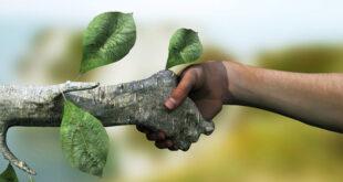 Le buone idee: il mondo ecologico