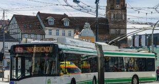 Le buone idee del 17 maggio: gli eco-bus.