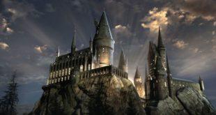 Potter Immersion