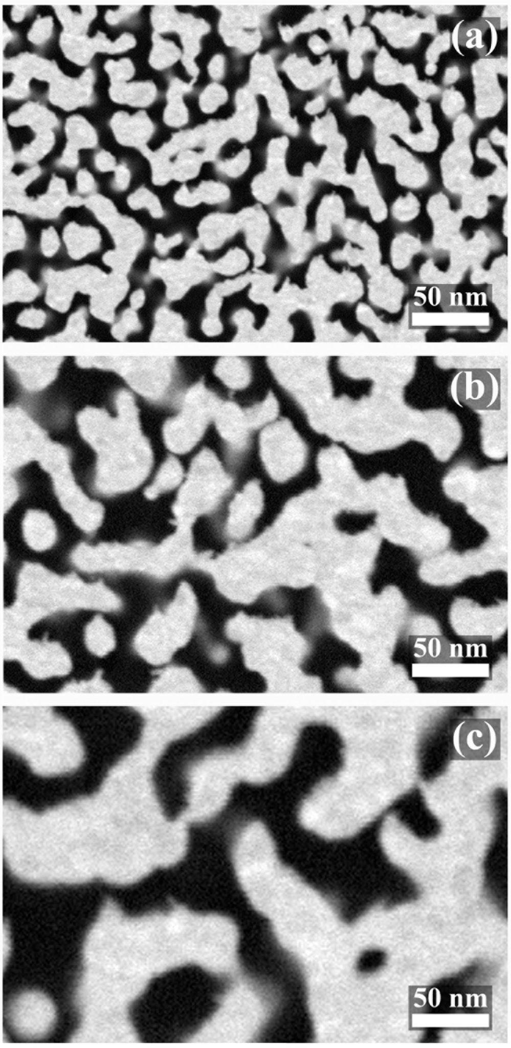 Struttura oro nanoporoso Metalli nanoporosi, dai muscoli umani alle applicazioni