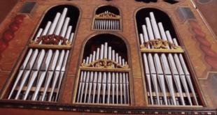 orani organo