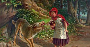 little red riding hood 1130258 960 720 I Racconti del Bosco di Charles Perrault