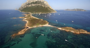 tavolara Verso un Natale sostenibile festeggiare con l'Area marina di Tavolara