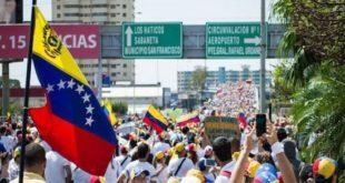 sardi in venezuela