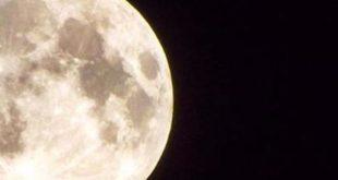 tutti sulla luna