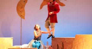 Sirenetta e il principe gentile