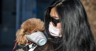 Una ragazza e il suo cane con una mascherina.