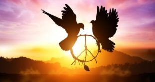 colomba e pace