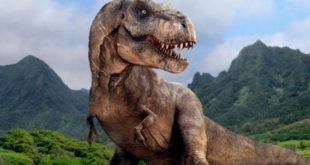 Dinosauri 3D, google