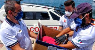 Fenicottero soccorso in mare da bagnante e Guardia costiera