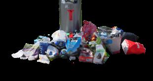 Eco-sostenibilità indagine