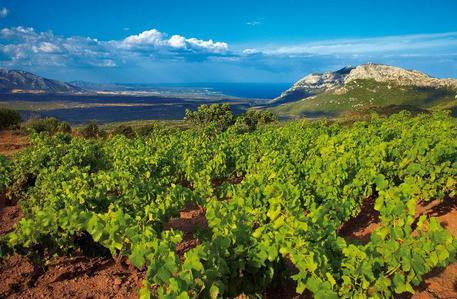 Iniziativa Movimento Turismo del Vino Sardegna (Mtvn)