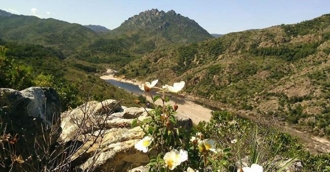 """17274 650 320 dy Premio internazionale Unesco per il Parco di Tepilora Progetto""""Pomona"""": Lodè in prima linea per la valorizzazione della biodiversità."""