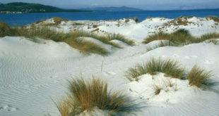 Le dune di Capo comino