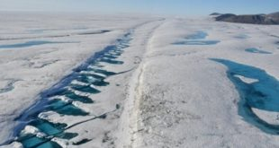 I ghiacci marini artici destinati a sparire nel 2035
