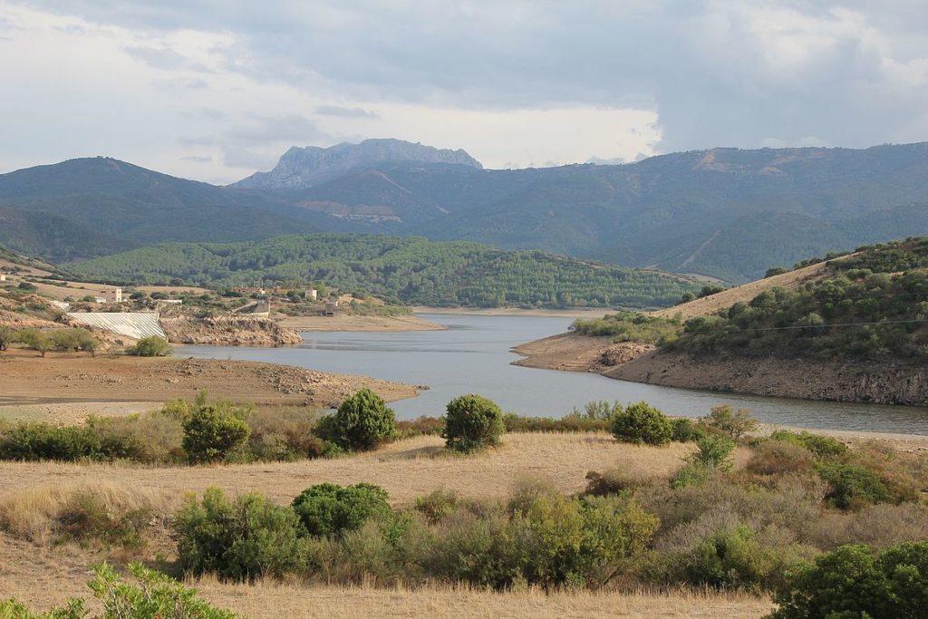 """Torpe lago del Posada 03 Progetto""""Pomona"""": Lodè in prima linea per la valorizzazione della biodiversità."""