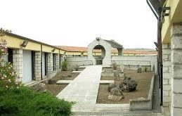 museo archeologico paleobotanico