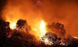 Incendi: vento e caldo alimentano fiamme in tutta l'isola