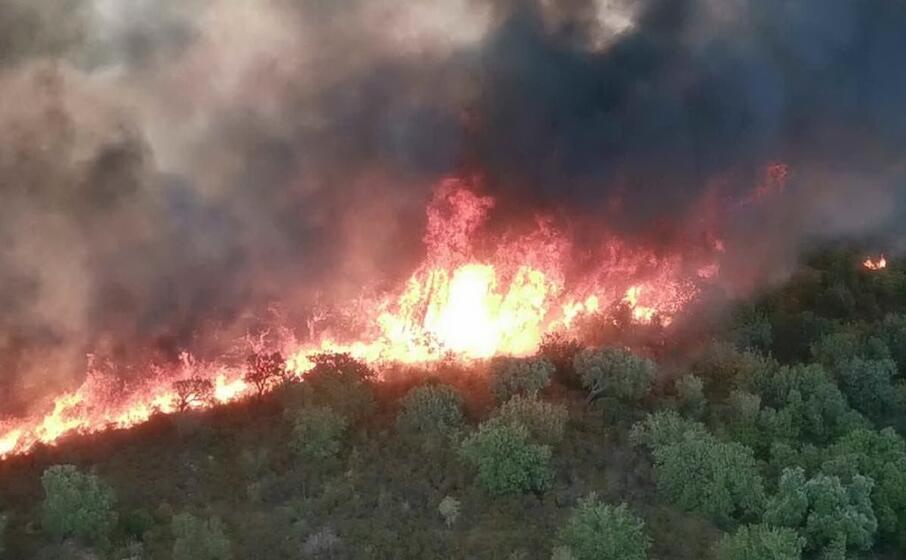 foto 940083 908x560 1 Bonorva 3mila ettari in fumo stato di calamità per il Comune sardo
