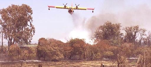 Bonorva 3mila ettari in fumo stato di calamità per il Comune sardo