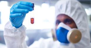 I nanomateriali non causano danni gravi agli organismi