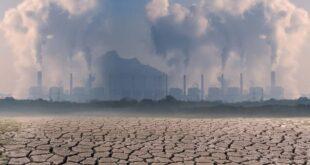Giornata per la prevenzione dello sfruttamento dell'ambiente