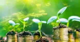 Green economy in Italia:una impresa su tre investe in sostenibilità