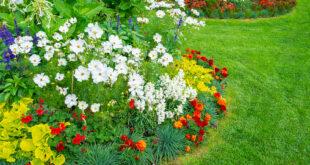 """Il giardino dedicato a Teresina Collu su""""Topscape Paysage"""""""