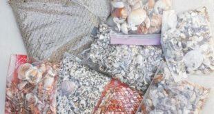 Sabbia e conchiglie in valigia, multati turisti a Cagliari