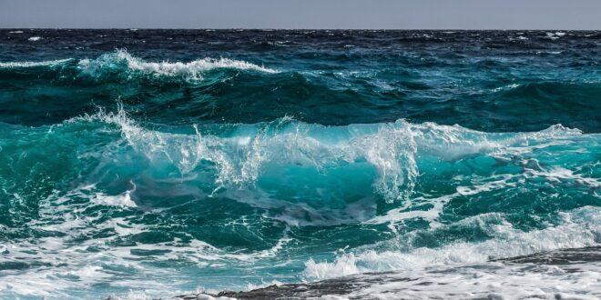 salvaguardia del mare