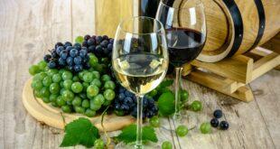 Villanova Wine Tour Cagliari