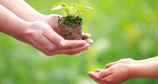 Comportamento ecologico