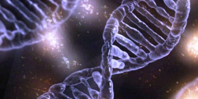 mutazione genetica
