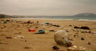 I 19 prodotti di plastica che l'Ue vuole rendere più riciclabili