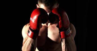 Boxe, Mike Tyson vs Roy Jones Jr