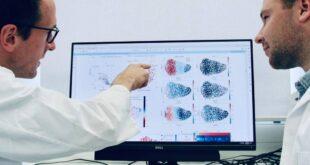 sistema immunitario nuovo studio