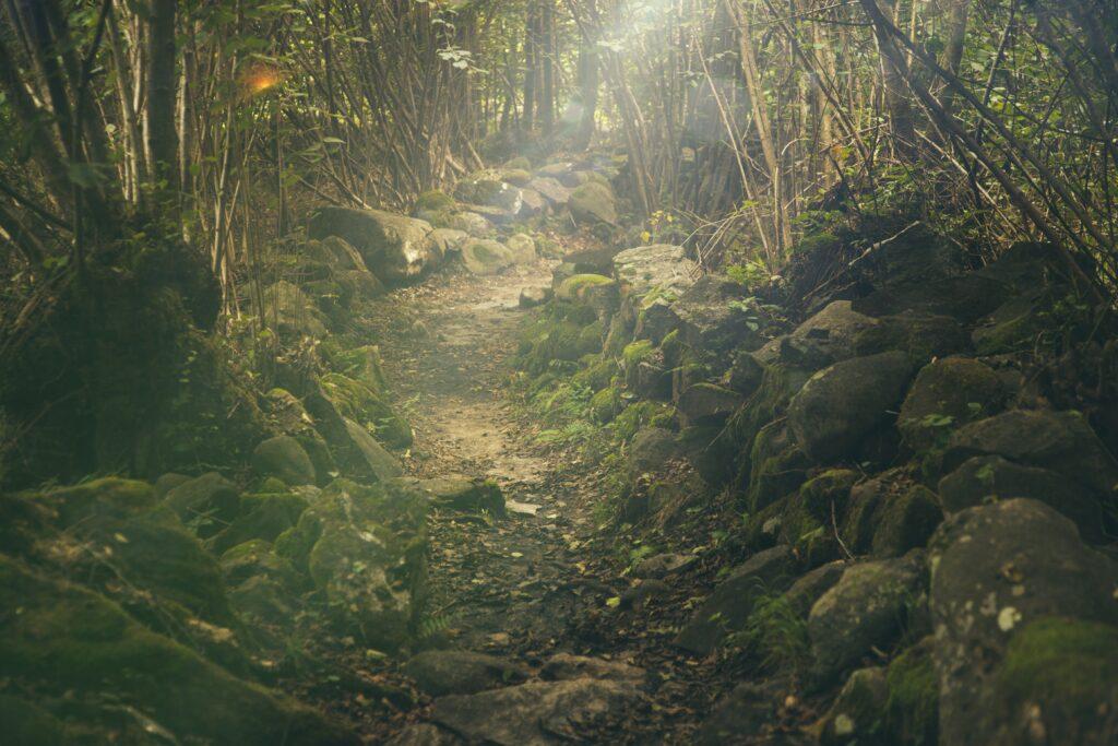 Canyon di Is Cioffus