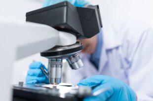 scienziati globuli bianchi