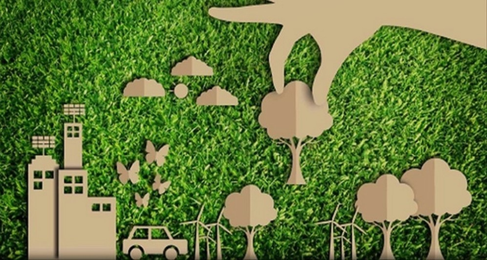 Riforestazione urbana