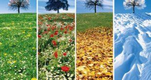 Le quattro stagioni: o sono solo due?