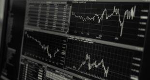 Reti e mercato