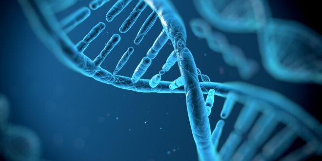 Genetica, sardi, covid