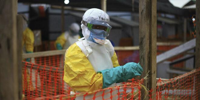 Reston ebolavirus