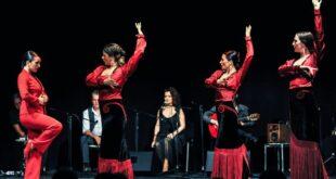 Flamenco Natale dei popoli