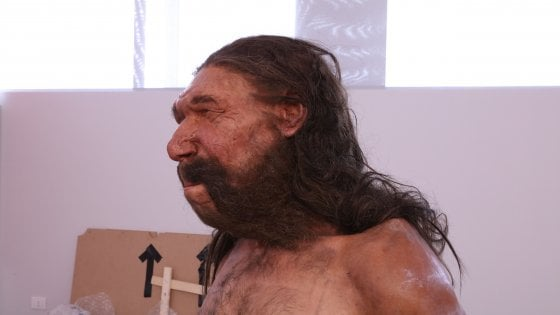 Uomo di Altamura: ricostruzione