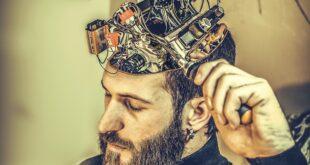 Sistema glinfatico: primo video sulla pulizia del cervello