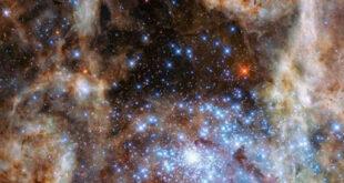 La galassia