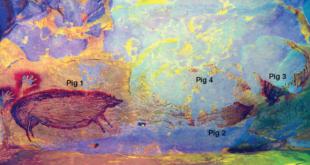 Pittura rupestre più antica trovata in Indonesia