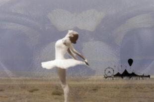 angela ticca scrittrice
